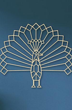 Geometrische Pauw
