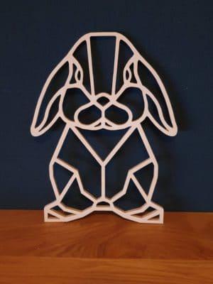 Geometrisch Hangoor konijn